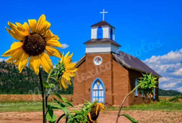 San Rafael Church with Sunflowers